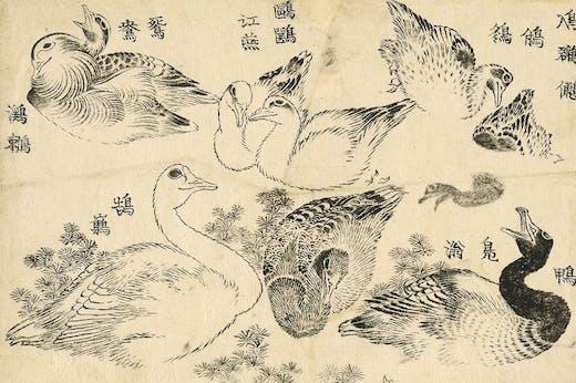 Water Birds (1829), Katsushika Hokusai.