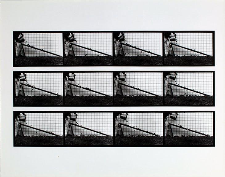 From the series Rites of Passage (1983-84), Hollis Frampton and Marion Faller. © Estate of Hollis Frampton and Marion Faller