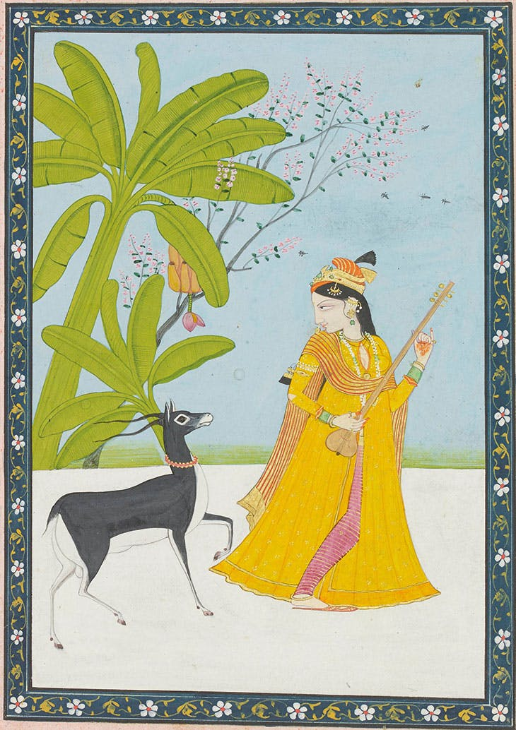 The nayika and the black buck (page from a Satsai of Bihari series) (c. 1810–20), attributed to the workshop of the Guler artist Chhajju at Chamba. Francesca Galloway (price on application)