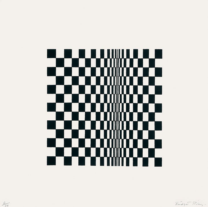 Untitled (based on Movement in Squares) (1962), Bridget Riley.