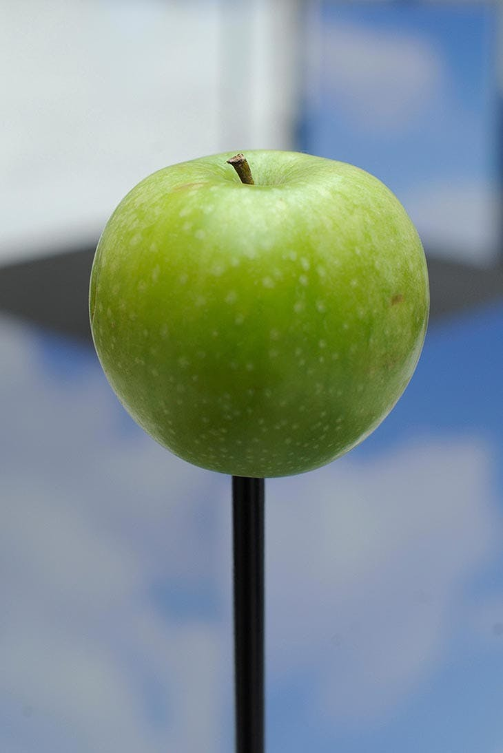 A green apple displayed at the opening of Musée Magritte, Brussels, in 2009.