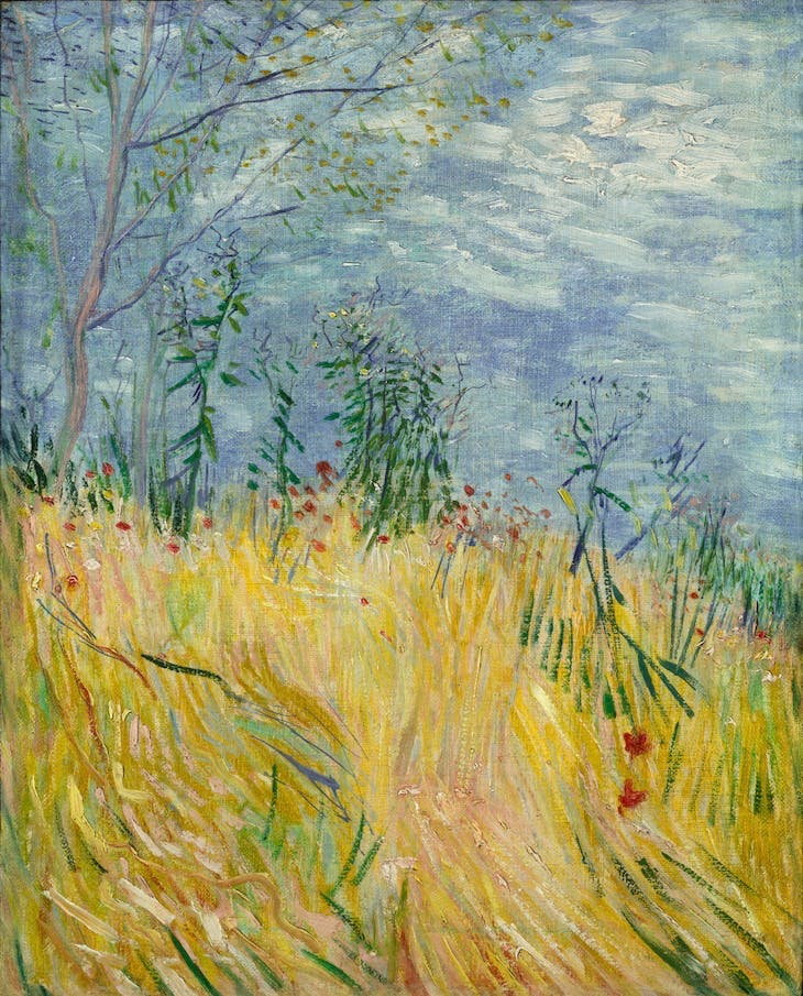 Edge of Wheat Field with Poppies (1887), Vincent van Gogh.