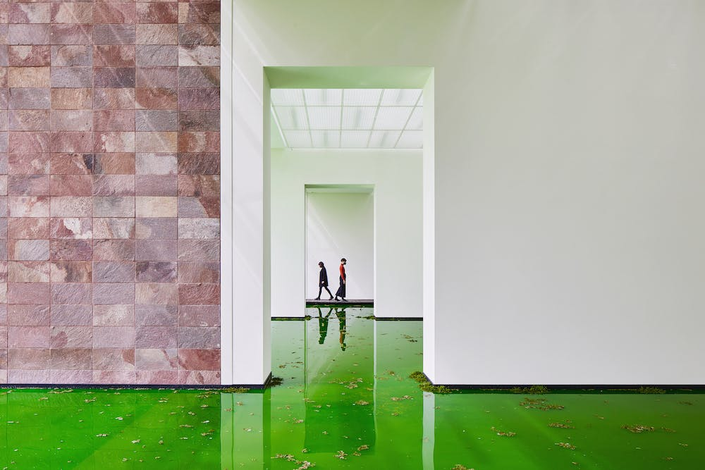 Installation view of 'Olafur Eliasson: Life' at the Fondation Beyeler, Riehen, 2021.