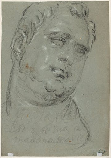 Head of a man, after the antique