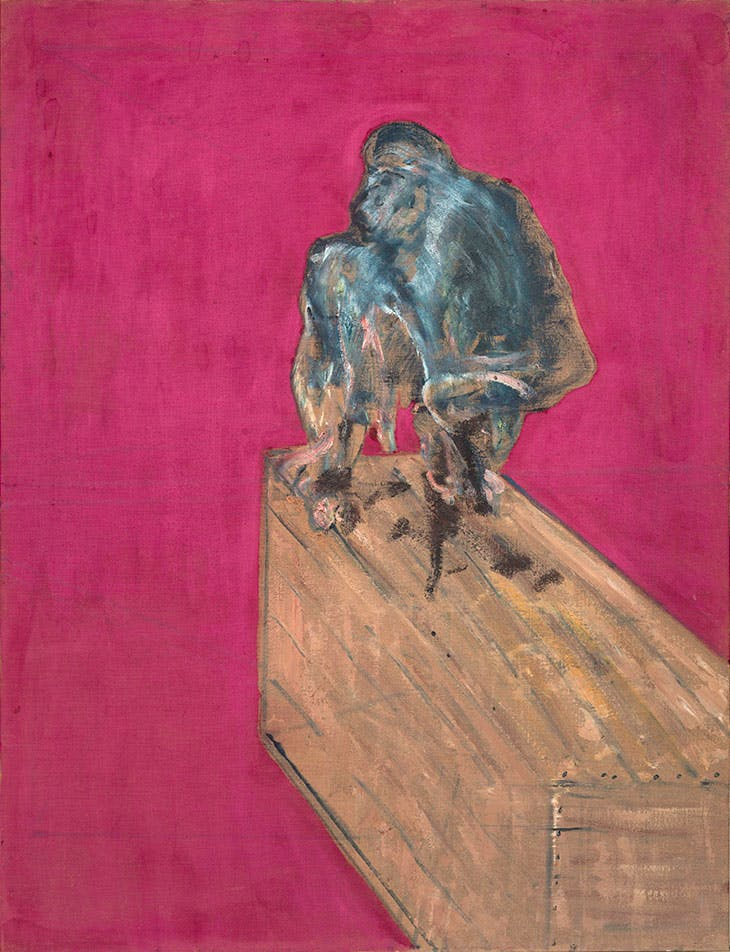 Study for Chimpanzee
