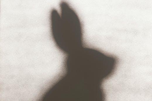 Rabbit (1986), Edward Ruscha. Los Angeles County Museum of Art