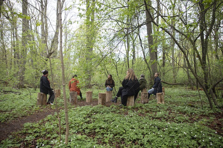 FOREST (for a thousand years…) (2012), Janet Cardiff & George Bures Miller.