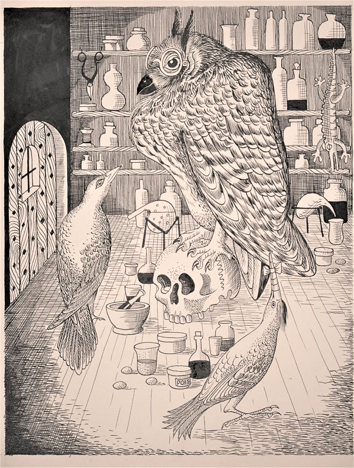 Large owl from 'The Woodpecker in the Gale' (in Mr Postlethwaite's Reindeer) (1945), Richard Chopping. Private collection.