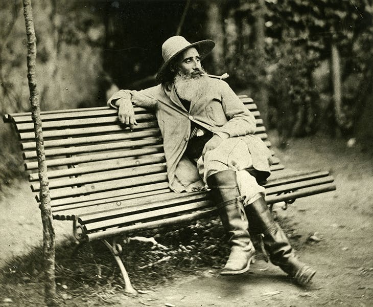 Camille Pissarro on a bench in the garden of his house in Pontoise (c. 1874).