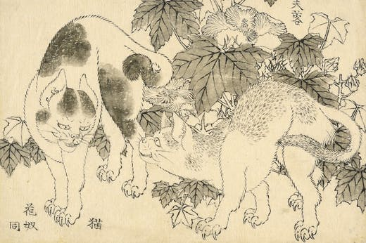 'Cats and hibiscus', from the Great Picture Book of Everything (1820s–40s), Katsushika Hokusai.