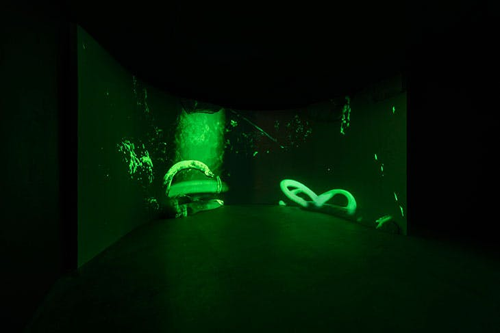 Abyssal Seeker [Demersal Zone] (2021), Joey Holder, installation view at Seventeen, London.