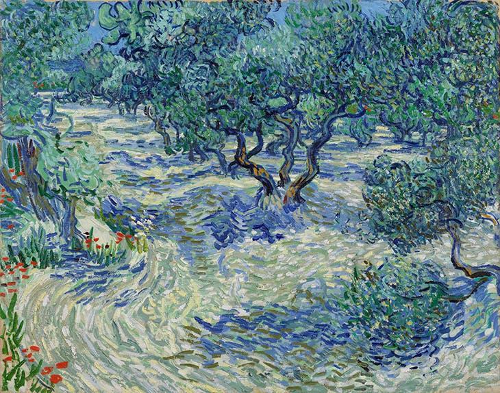Olive Trees (1889), Vincent van Gogh,